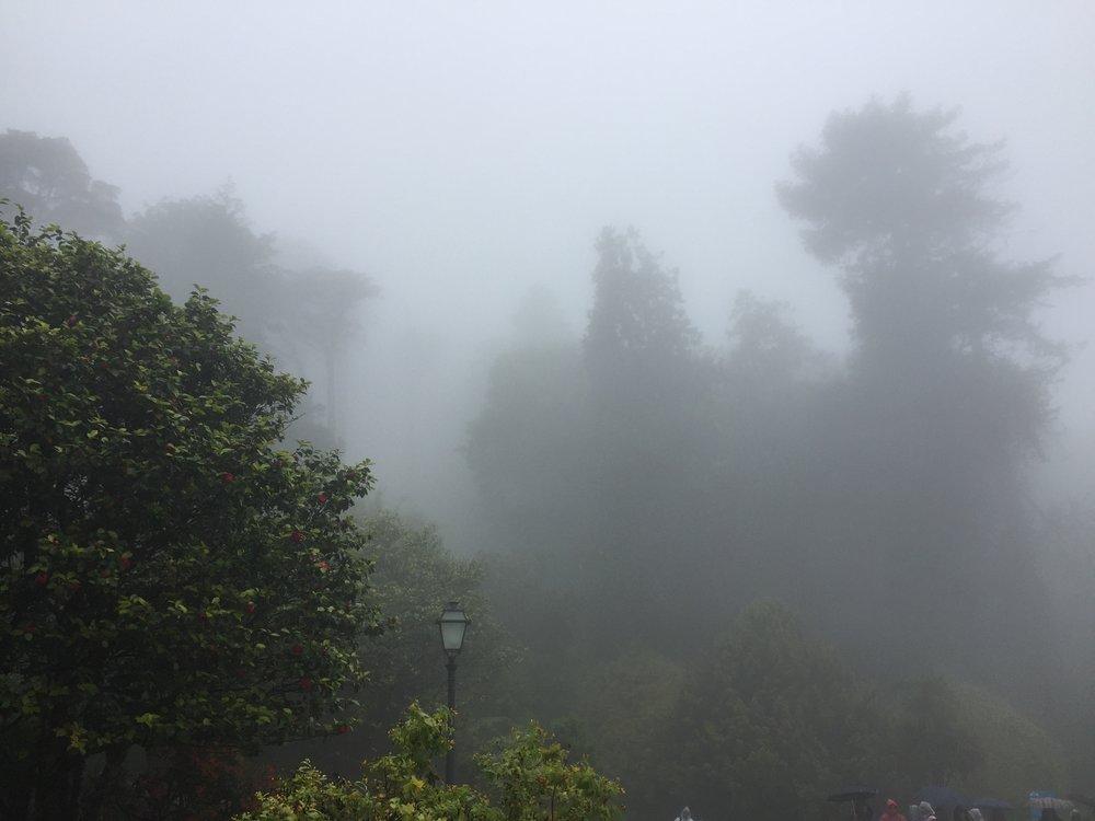 O mau tempo nos impediu de visitar o Convento dos Capuchos