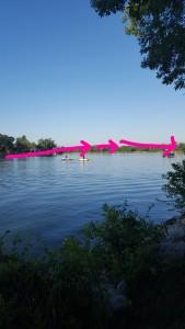 A schematic of the swim course.
