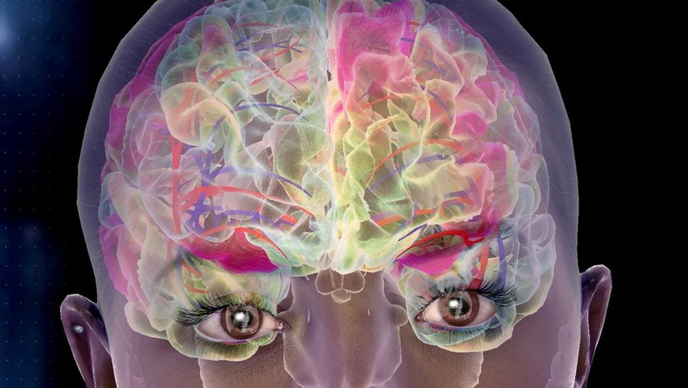 Kiwi company Soul Machines is creating digital humans powered by biologically inspired models of the brain.