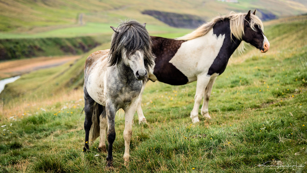 Iceland-Day-2-127.jpg