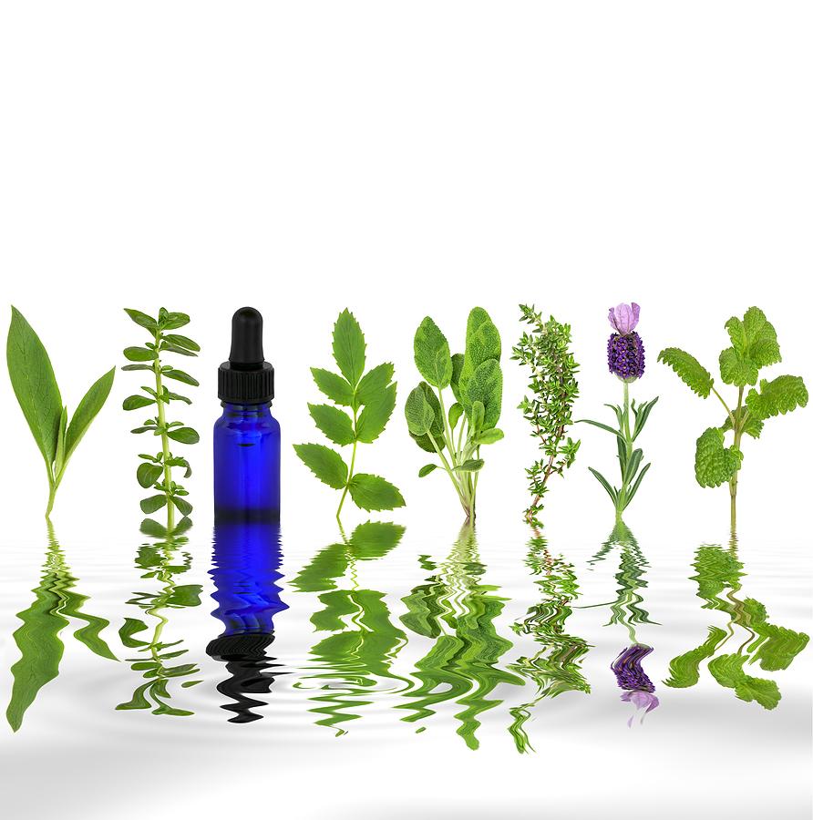 Homeopathy Hamilton Homeopathy Binbrook Herbal Medicine Natural Medicine Hamilton