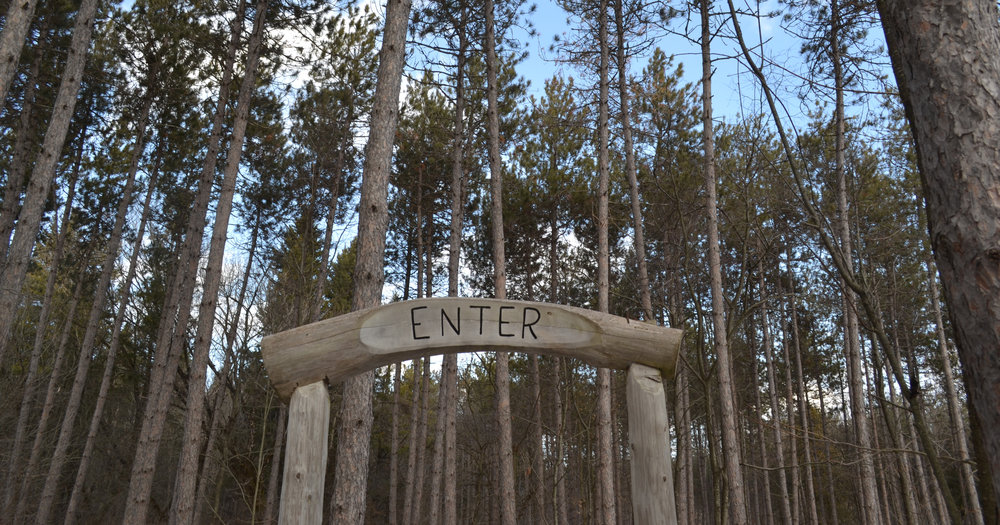 Entering the Carstairs hiking trails, Northumberland County Forest.