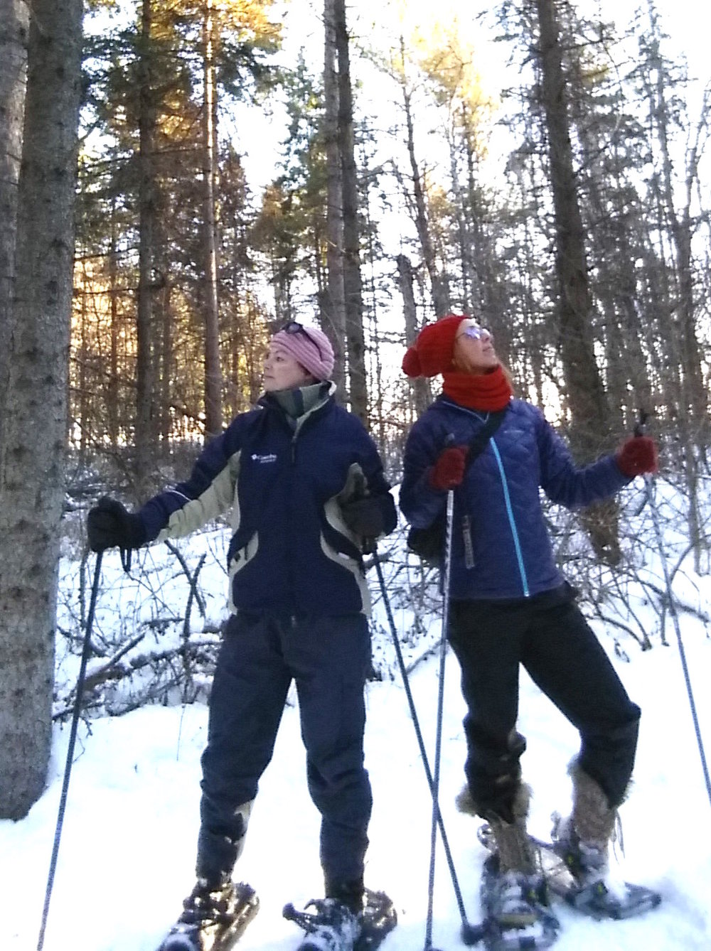 Sarah and Sara on snowshoe, surveying our forest surroundings.