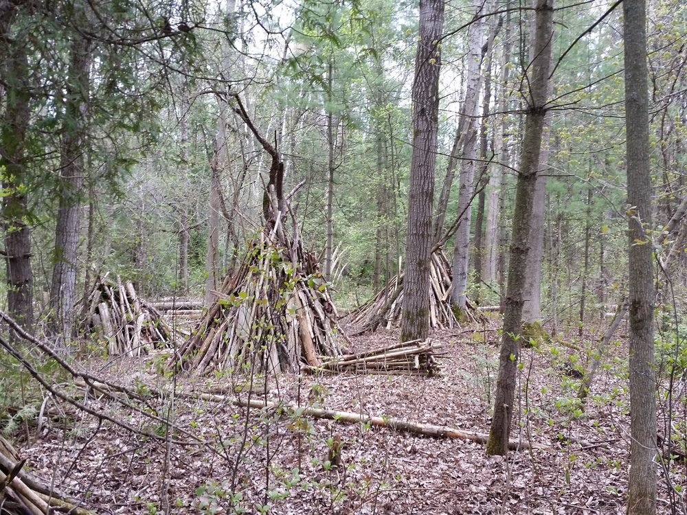 Lean-tos throughout the woods.