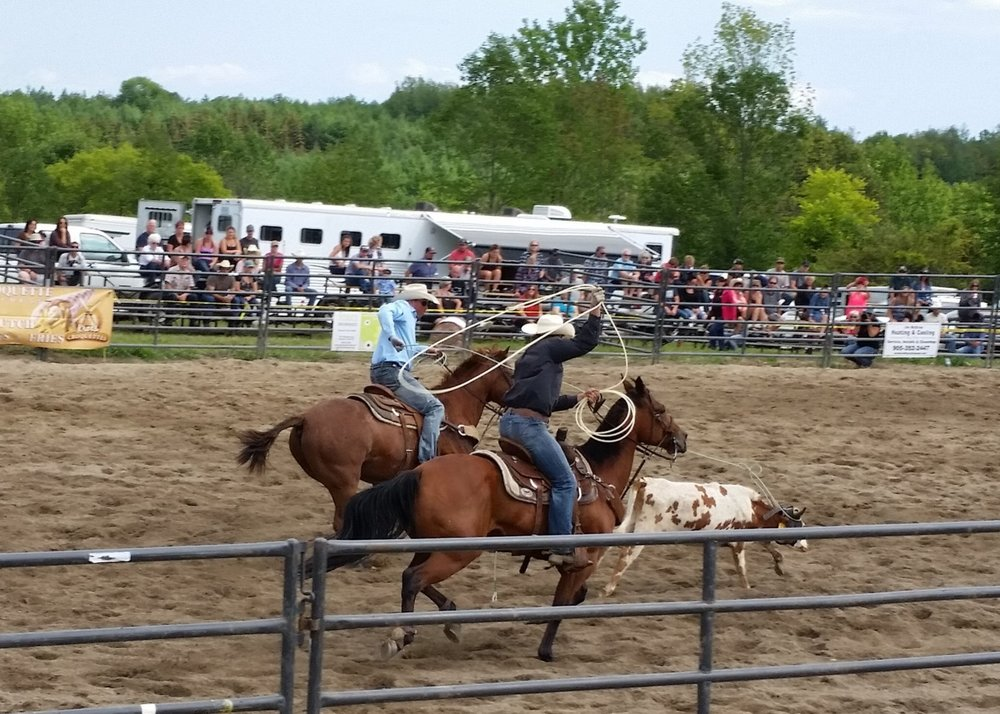 Team calf roping.