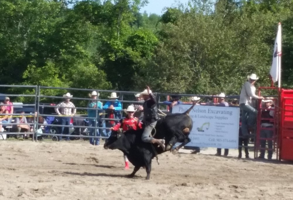 Bull riding. The bull won.