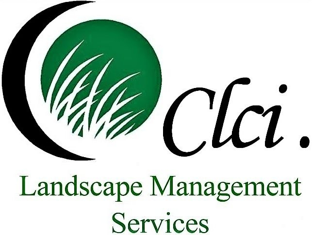Premier Residential and Commercial Landscaping | Creative Landcare