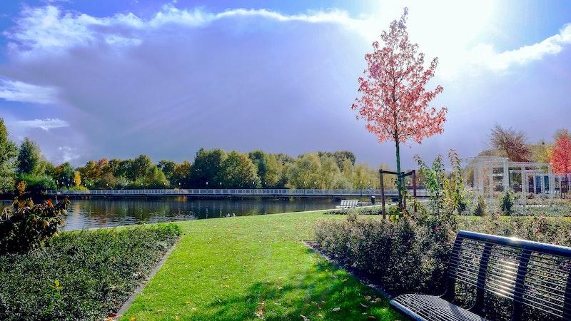 bench-clouds-daylight-.jpg