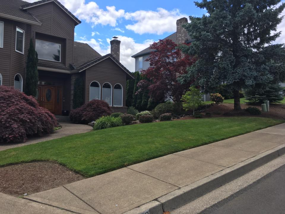 Curb appeal landscaping for residential property by Creative Landcare LLC