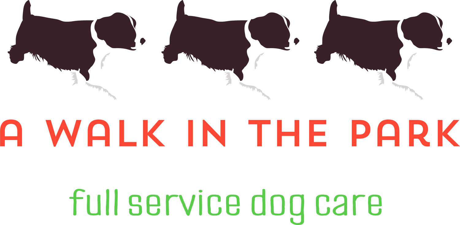 A Walk in the Park - Toledo Full Service Dog Day Care