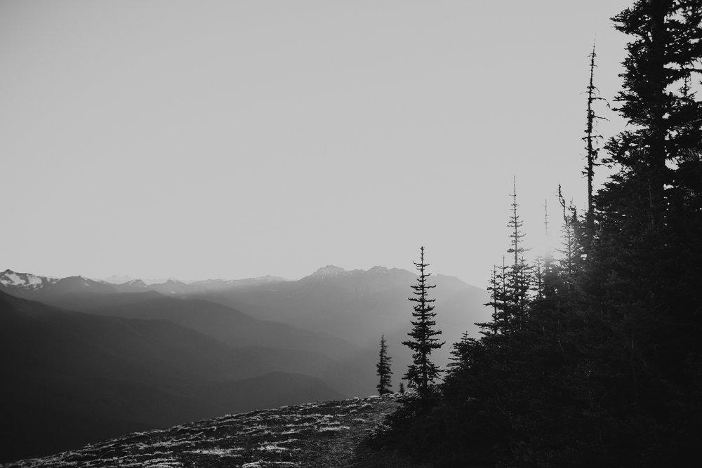 pnw-landscape-port angeles-sequim-mountains-sunset-elopement-kayla dawn photography-kayladawnphoto-portrait-photographer-7.jpg