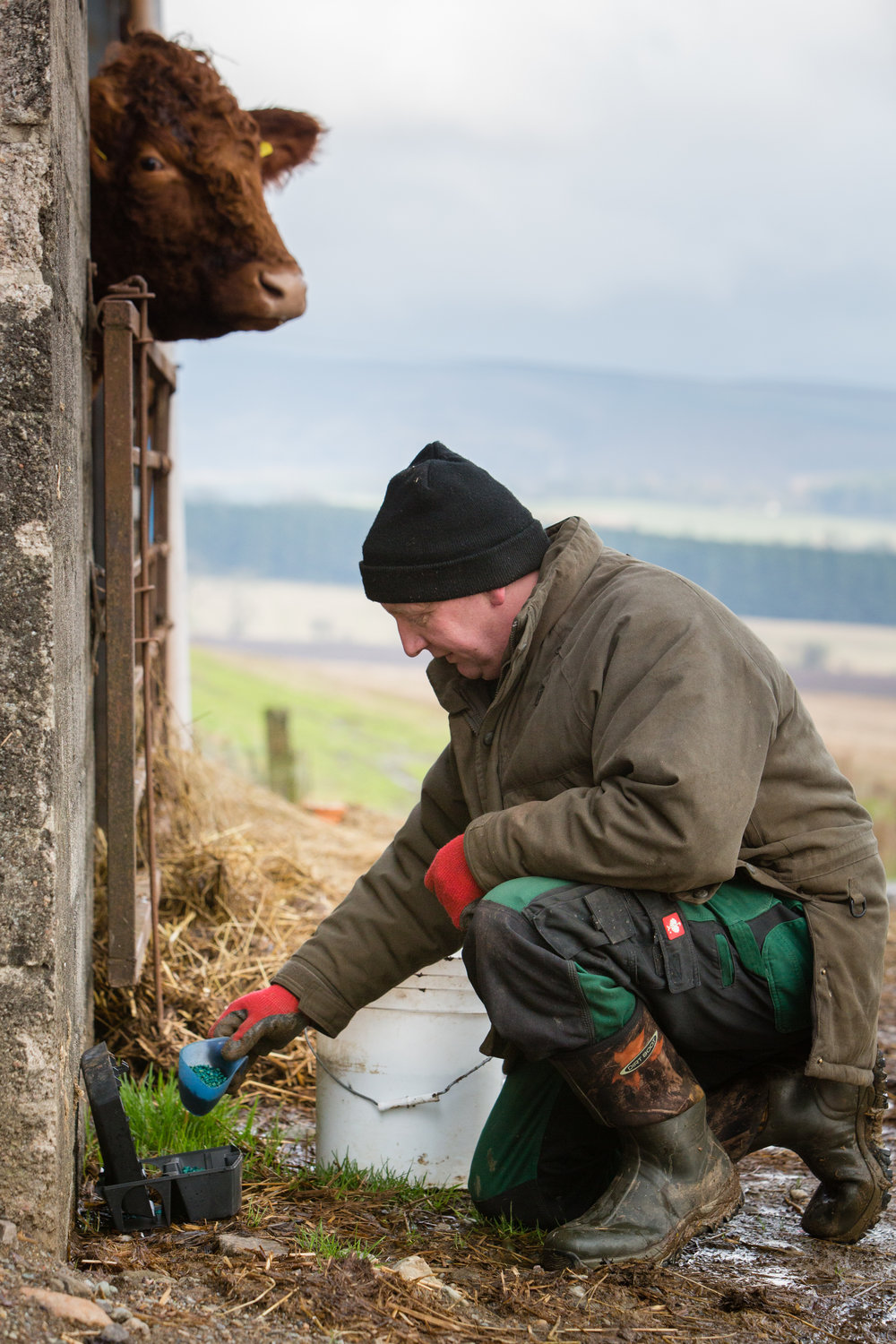 Pest control for Farms in Angus, Agriculture Aberdeenshire