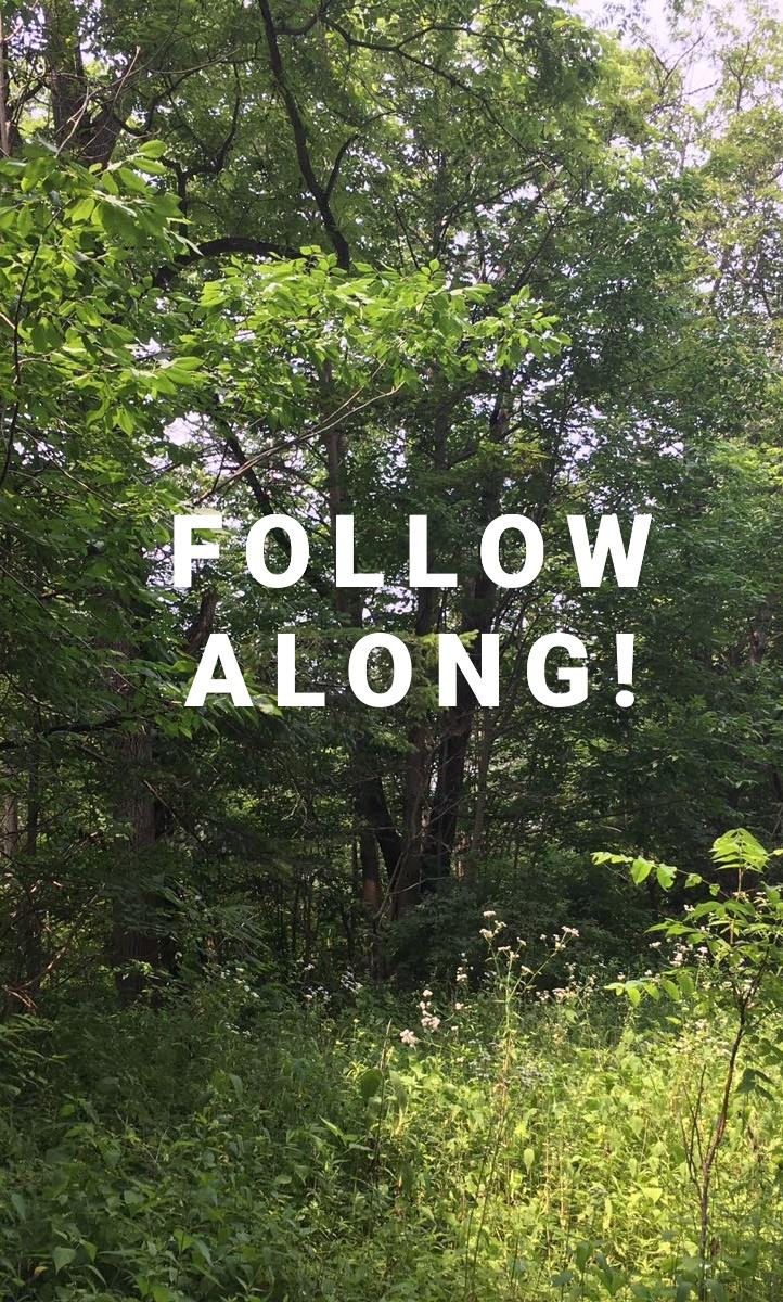 04 - Follow Along.jpg