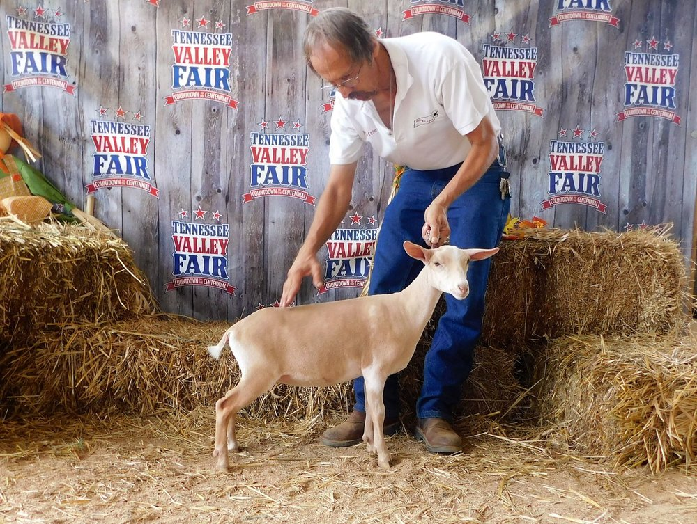 First place junior kid at the Tennessee Valley Fair 9/16/2018