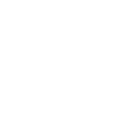 The Academy SF