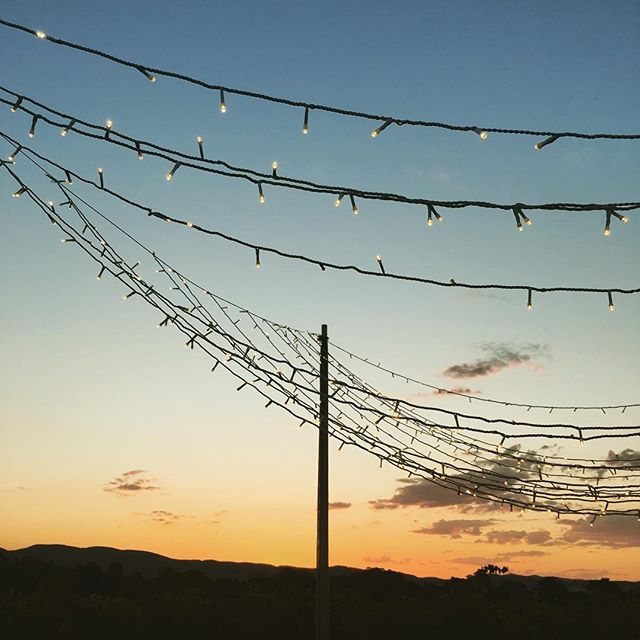 A blanket of fairy lights at sunset....what more could you ask for! ✨ . . . #fairylights #sunset #outdoorwedding #summerwedding #eventinspo #blanketoflights #lighting #outdoorevent #weddinginspo #heavenonearth #vinyard #vinyardwedding #vines