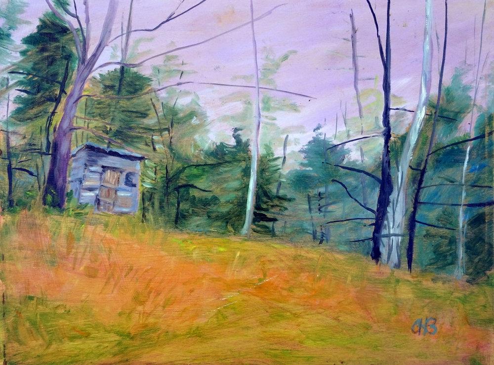 SVFAL, The Red House, Fine Art, Black Mountain, Anne Bevan-004.jpg