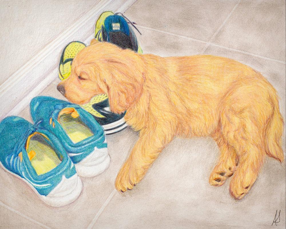 Andreas Stutesman, Colored Pencil, Dog Paintings-019.jpg