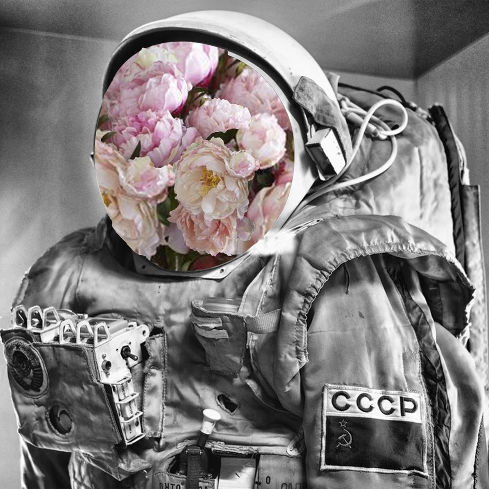 Cosmonaut4.jpg