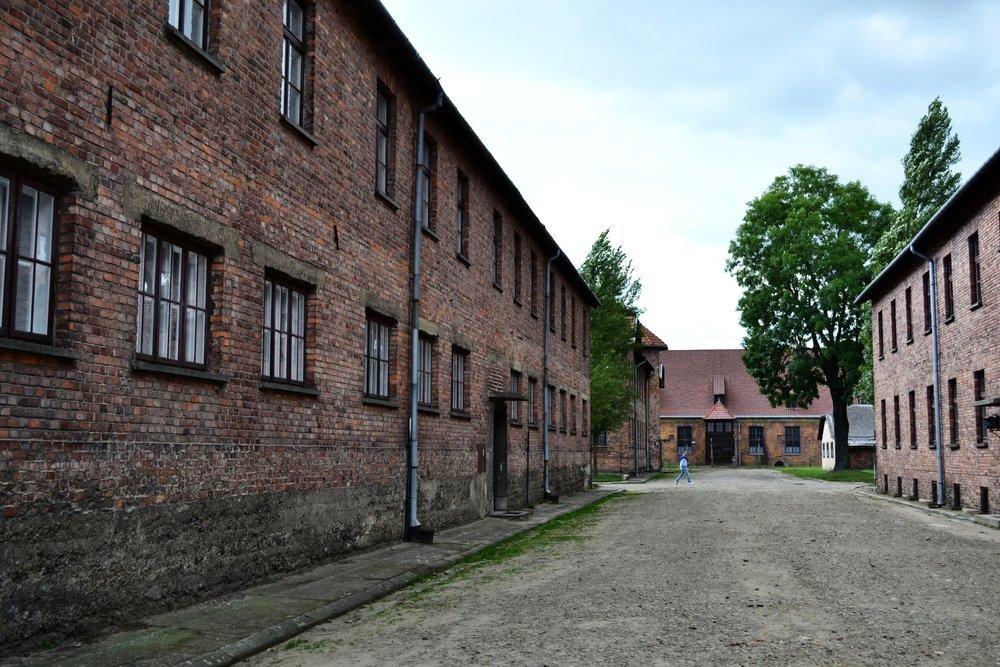 Auschwitz Blocks