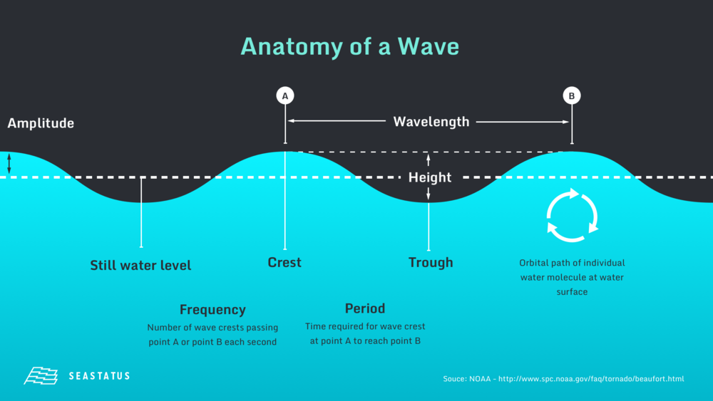 Anatomy of a Wave.png