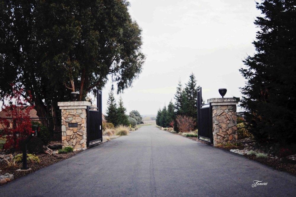 SVE gates.jpg