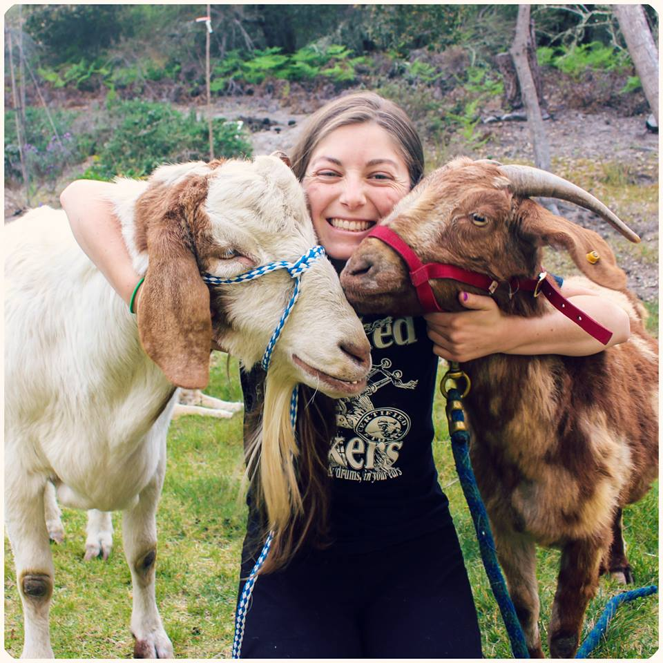 alexandra-rice-photography-goats
