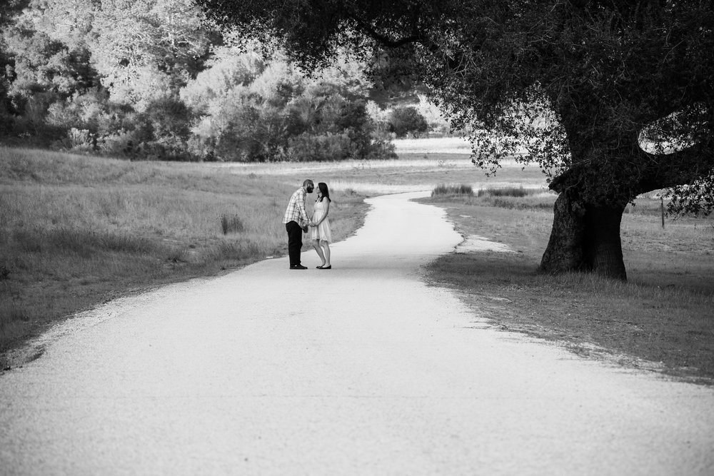 alexandra-rice-photography-engagement-shoot-quail-hollow-ranch-santa-cruz-road.jpg