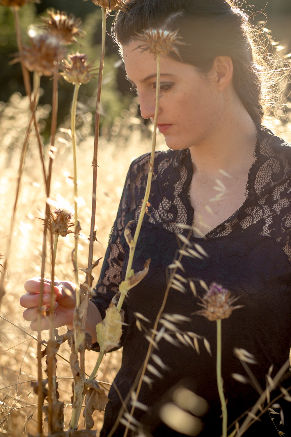 alexandra-rice-photography-quail-hollow-ranch-gothic-photoshoot-meadow-dead-field-flowers.jpg