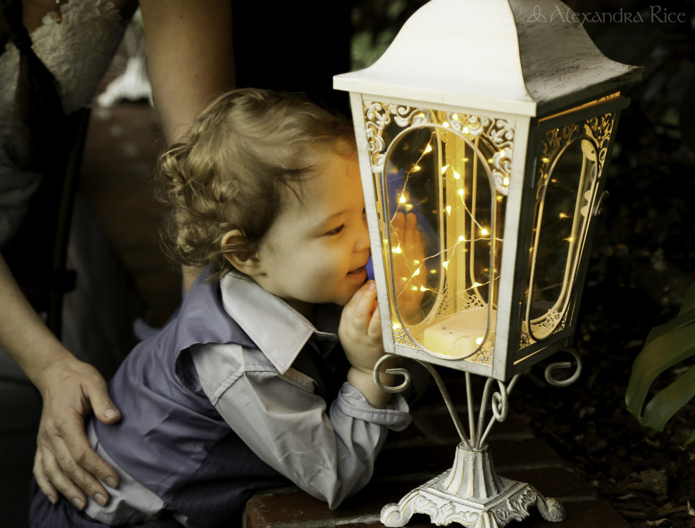 alexandra-rice-photography-shadowbrook-capitola-santa cruz-wedding-reception-bride-son-toddler-vintage-lantern-exploring.jpg