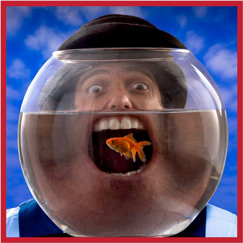 MR FISH.png
