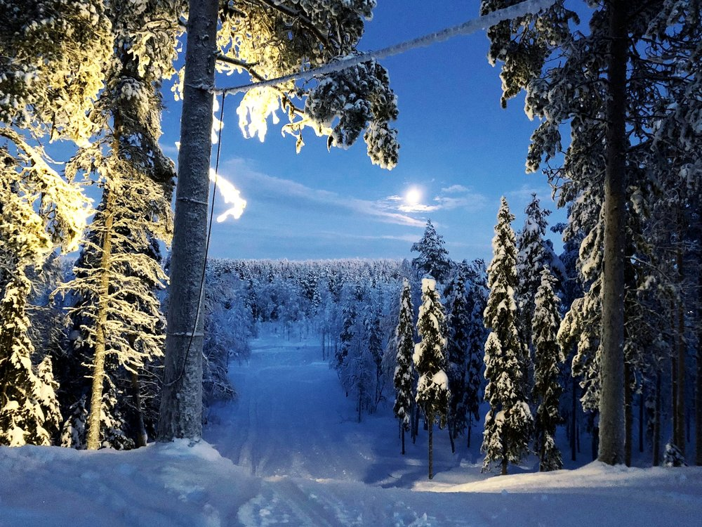 Lapland Polar Night
