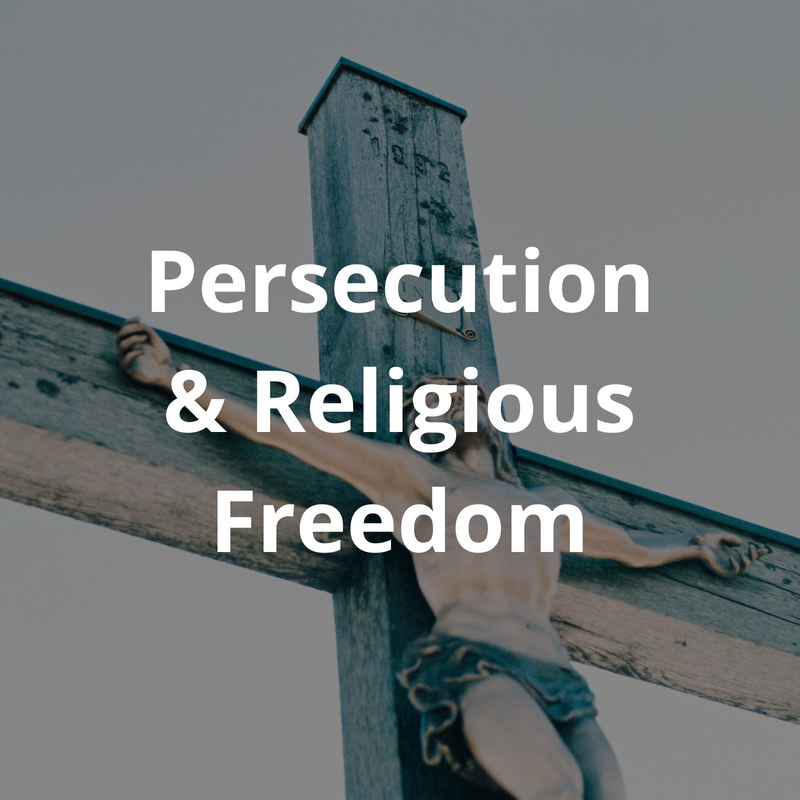 In many parts of the world violence and intolerance towards christians is on the rise. How should we react and what form should advocacy take? Is it sufficient to sit back and say that persecution brings growth? How can we best support those who suffer and change hard core prejudice by promoting freedom of religion and belief?