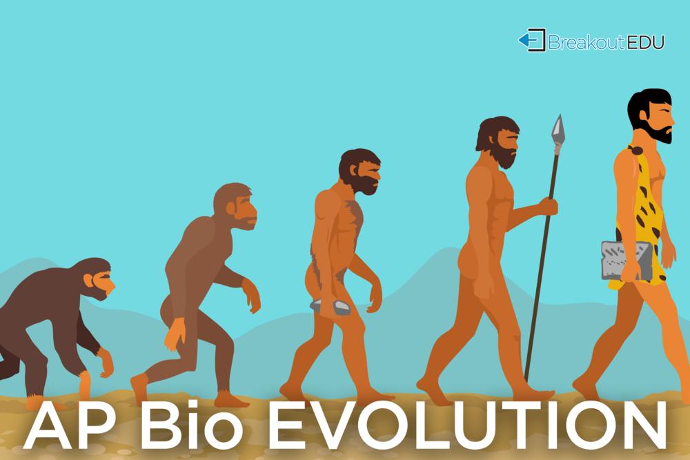 evolution (1).png