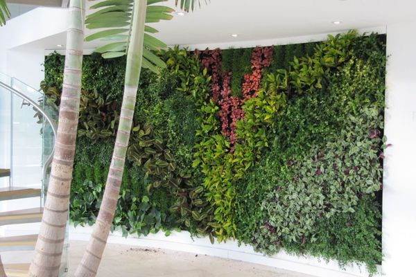 SMI National_Living Wall_Planteria 2.jpg