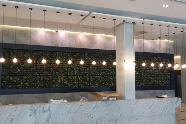 SMI National_Living Wall_Century City Hotel 4.jpg