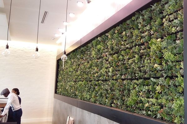 SMI National_Living Wall_Century City Hotel 2.jpg