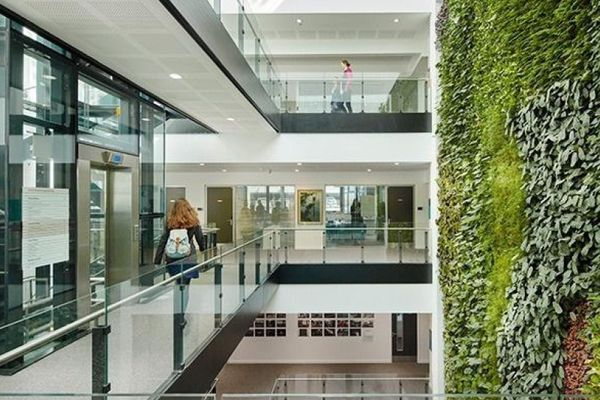 SMI National_Living Wall_David Attenborough Building 2.jpg