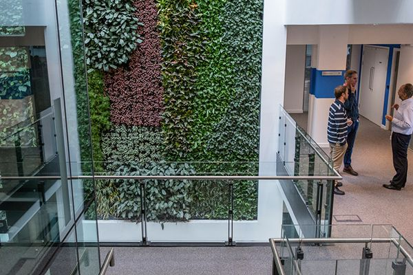SMI National_Living Wall_David Attenborough Building 1.jpg