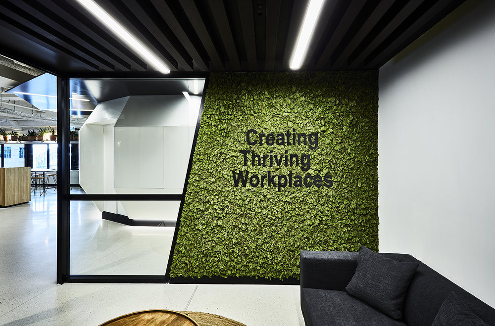 Axiom Workplaces Head Office -Sydney - Studies world-wide are proving that office spaces with greenery will experience better staff retention, improved staff focus and increased market perception.
