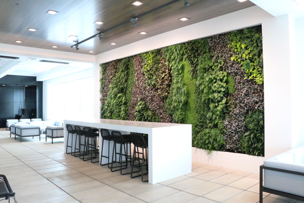 Air New Zealand Koru Lounge -Auckland International Airport,New Zealand - This Living Wall creates a unique atmosphere for travelers, with particular focus on structural effect, along with detailed consideration of the natural ambience.