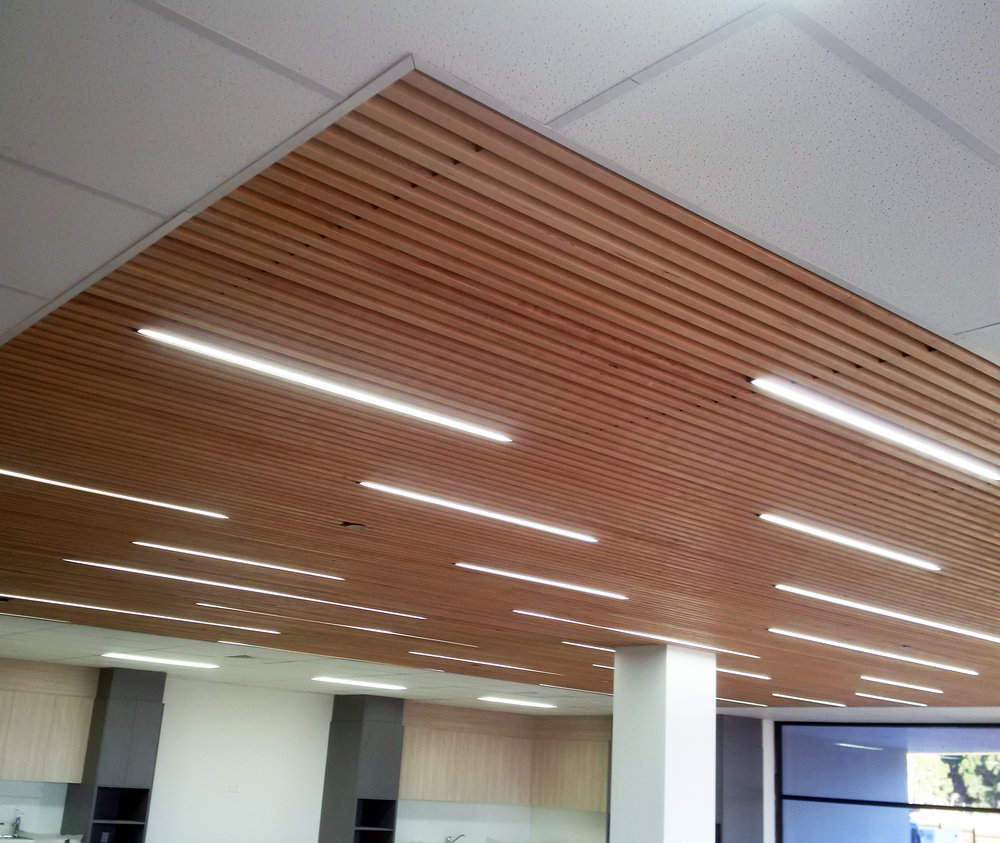 SMI National_Medline_Timber Ceiling Installation.jpg
