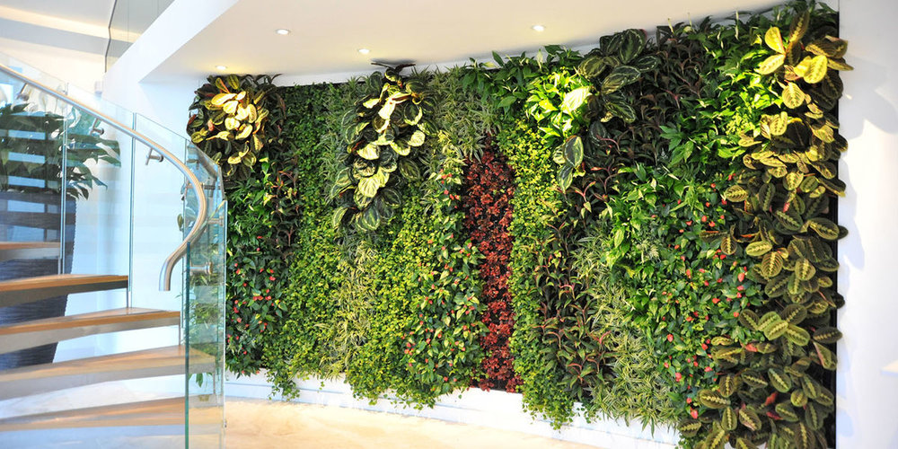 Living Wall in Reception Area, United Kingdom
