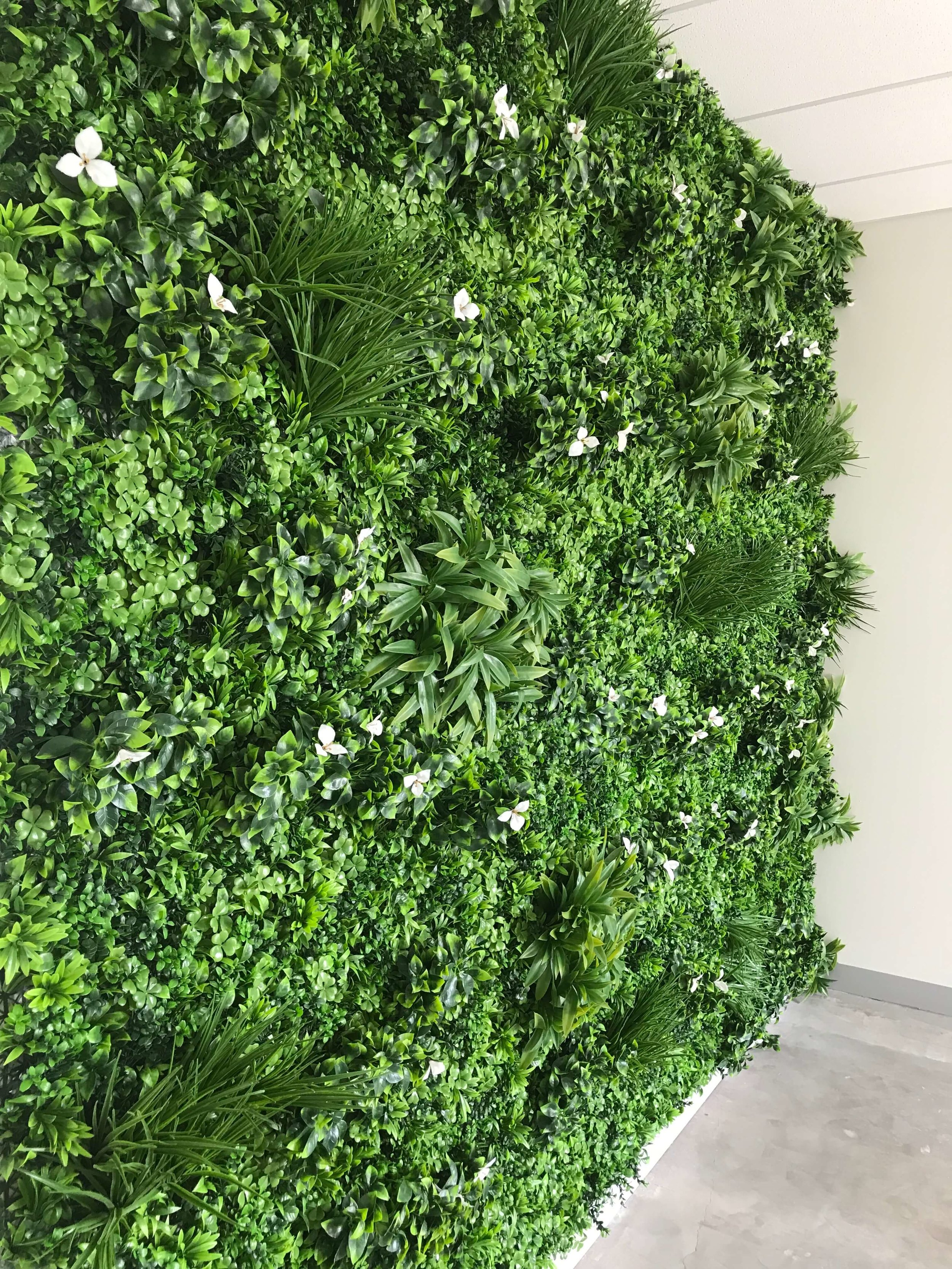 Artificial Plant Wall Projects