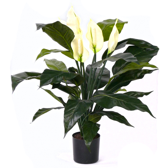 SMI National_White Harvest Spathiphyllum 48cm_Artificial Plant.JPG