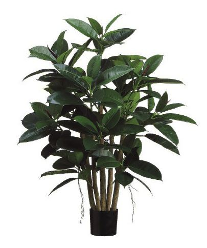 SMI National_Fiscus Mangrove_Tree_1m_Artificial Plant.JPG