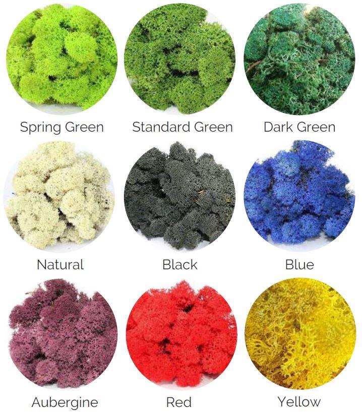 SMI_MossArt_colours.JPG