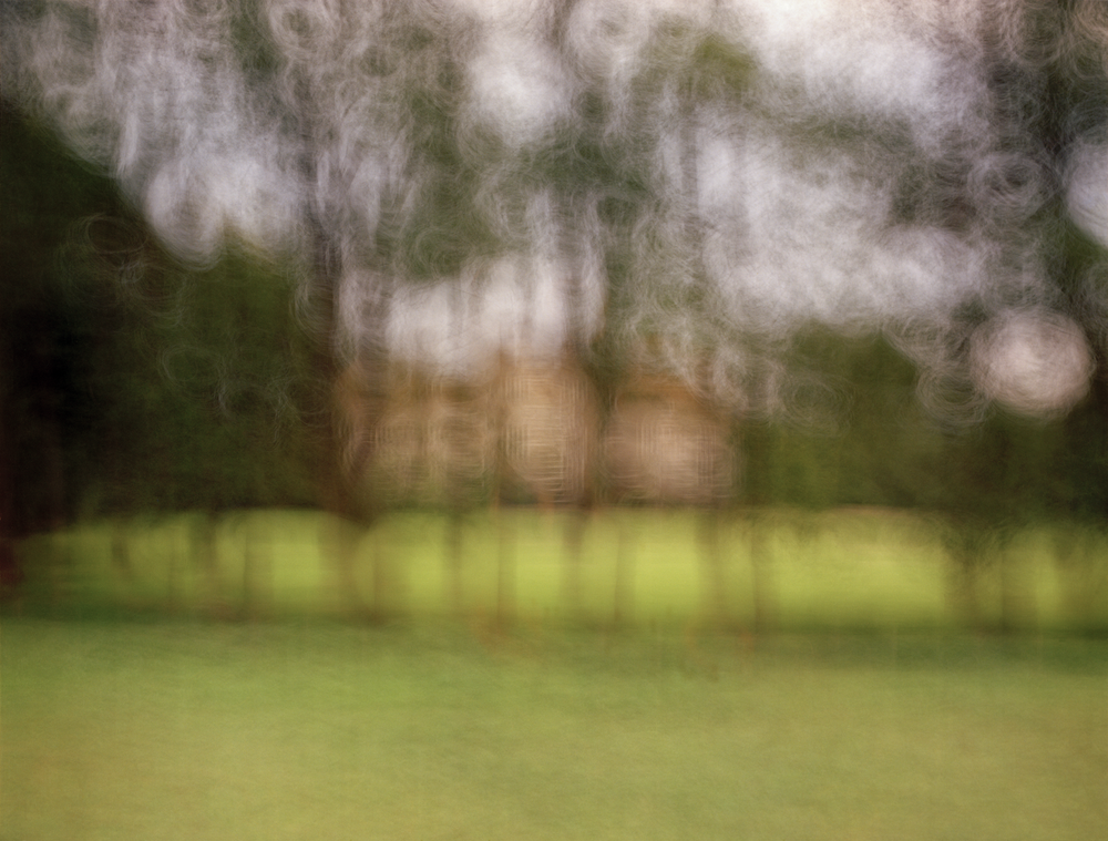 /  Manor Through Trees