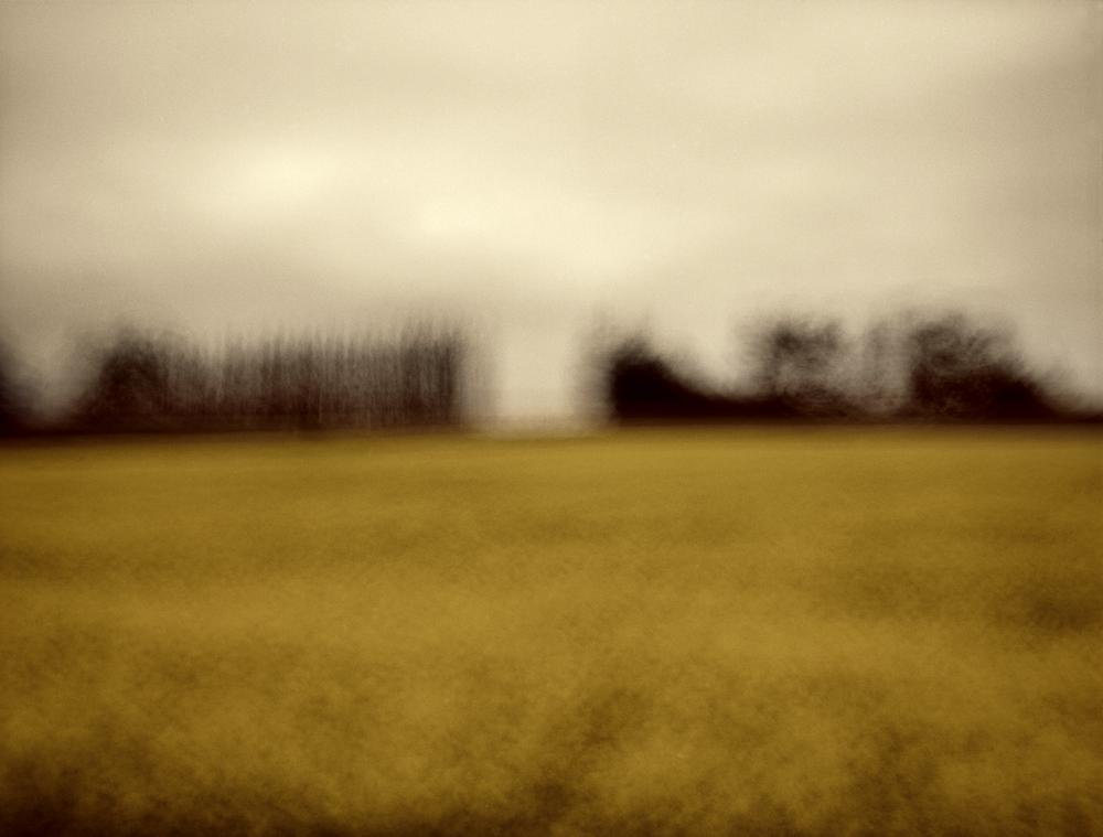 /  Field