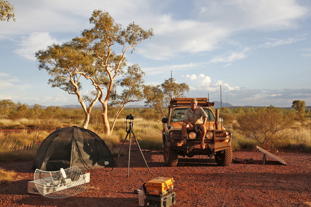 My Camp in the Hamersley Range, February, 2015